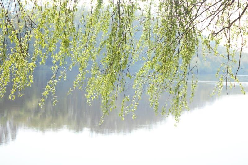 Pil och flod E royaltyfri fotografi
