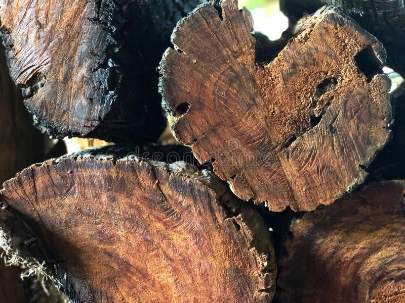 Pila apilada de madera de abedul Textura, fondo leña para la energía foto de archivo libre de regalías