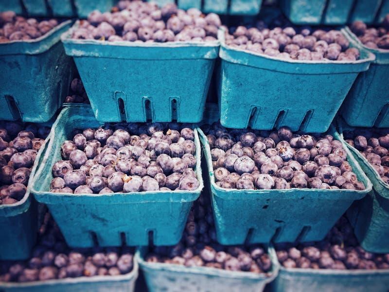 Pila de arándanos locales frescos estacionales, en venta en un mercado de producción, Canadá fotos de archivo libres de regalías