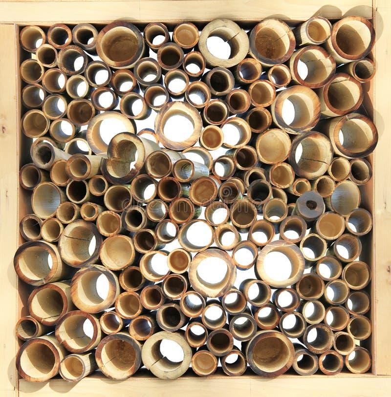 Pila de bambú del corte fotografía de archivo libre de regalías