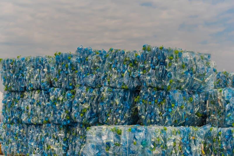 Pila de botellas plásticas del ANIMAL DOMÉSTICO fotografía de archivo