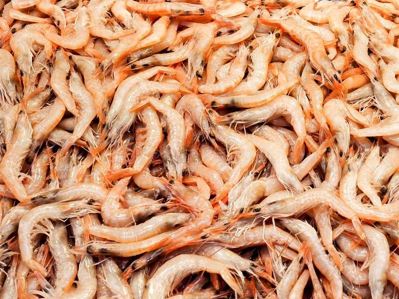 Pila de camarón fotos de archivo libres de regalías