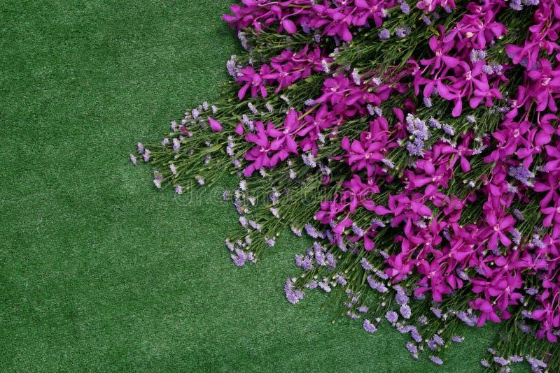 Pila de flor tropical de las orquídeas violetas rosadas y de flo púrpura del aster fotografía de archivo
