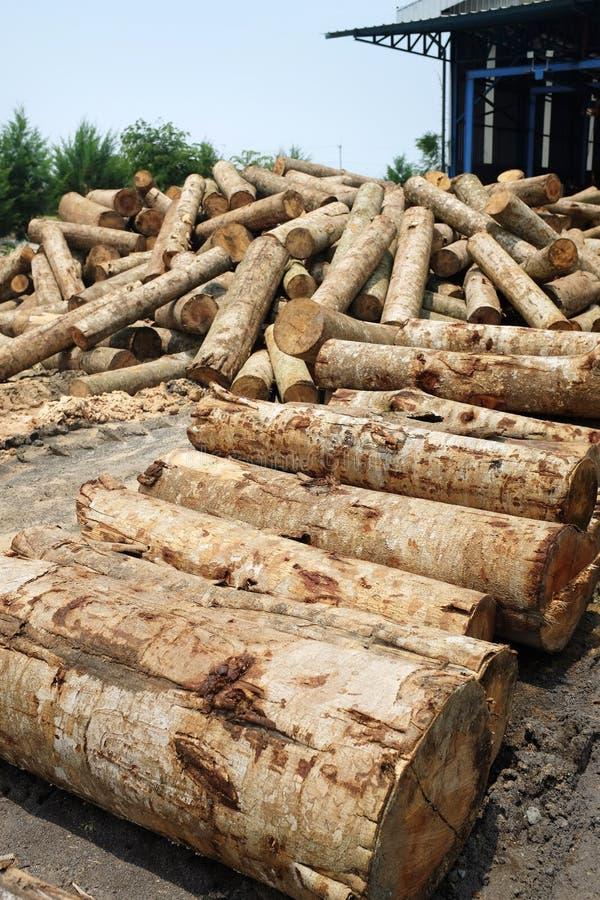Pila de inicio de sesión de madera de la madera una fábrica del molino de la madera contrachapada imagen de archivo