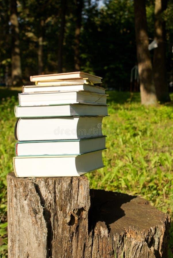 Pila de libros que ponen al aire libre fotografía de archivo libre de regalías
