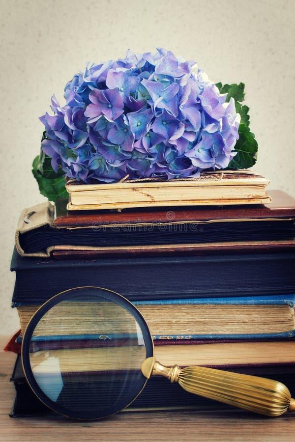 Pila de libros viejos con las flores y el espejo imágenes de archivo libres de regalías