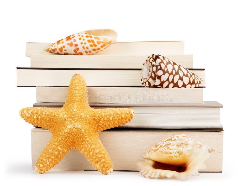 Pila de libros y de conchas marinas fotos de archivo