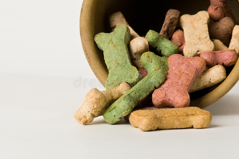 Pila de los huesos de perro fotografía de archivo