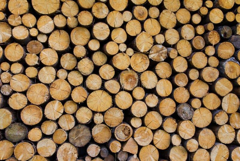 Pila de madera foto de archivo libre de regalías