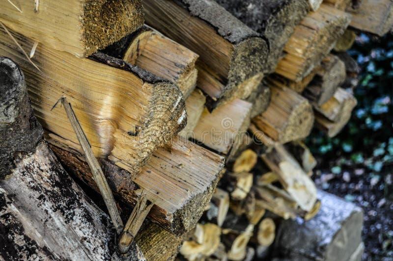 Pila de madera foto de archivo