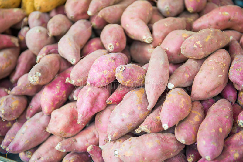 Pila de patata dulce para la venta en mercado imágenes de archivo libres de regalías
