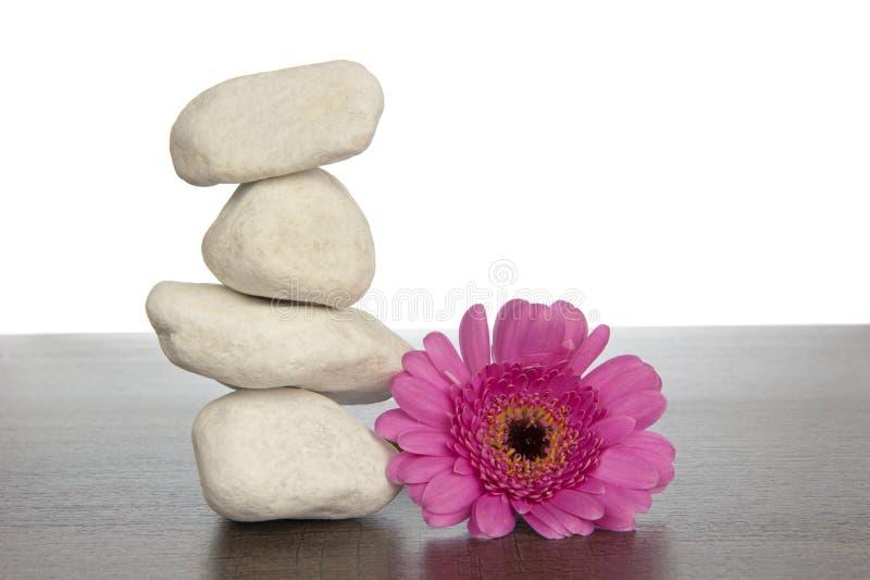 Pila de piedras blancas al lado del gerbera rosado fotos de archivo libres de regalías