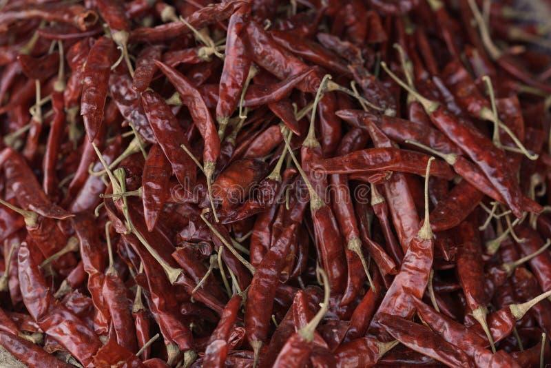Pila de pimientas de chile rojo secadas fotos de archivo libres de regalías