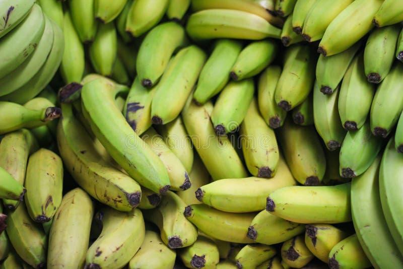 Pila de plátanos verdes en el mercado o la tienda de los granjeros fotografía de archivo