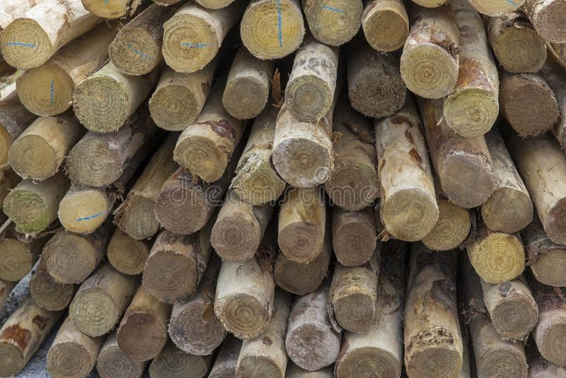 Pila de polos de madera fotografía de archivo libre de regalías