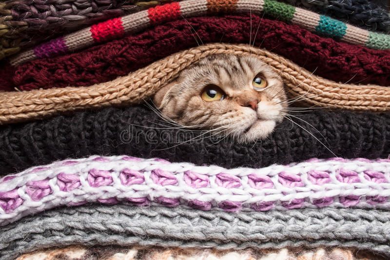 Pila de ropa de lana fotos de archivo libres de regalías