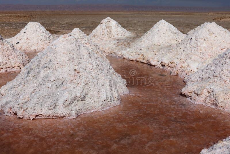 Pila de sal de tabla a la producción natural fotos de archivo libres de regalías