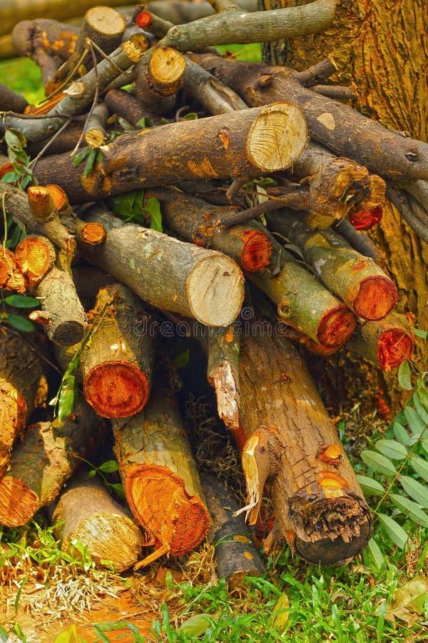 Pila de textura del fondo de madera de pino. imagenes de archivo