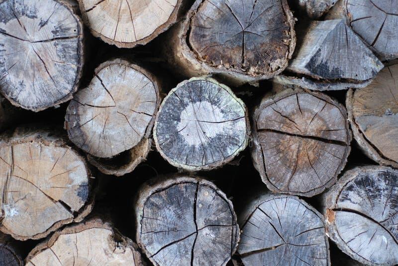 Pila de troncos de árbol imagenes de archivo