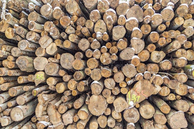 Pila de troncos en invierno con las marcas foto de archivo libre de regalías