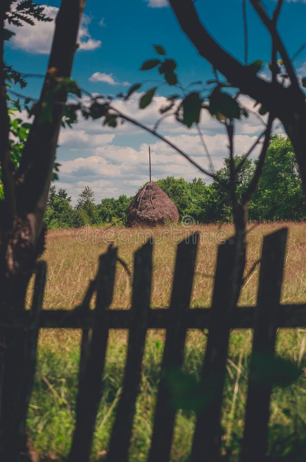 Pila del fieno incorniciata con un vecchio recinto di legno e gli alberi immagine stock libera da diritti