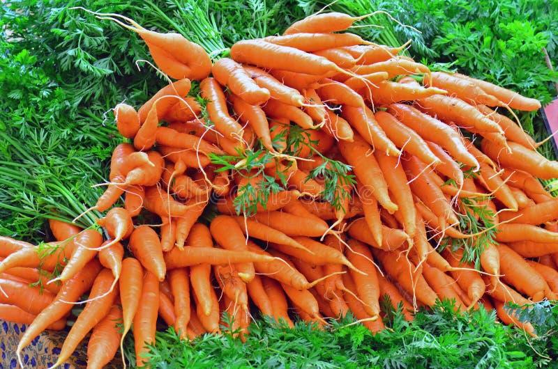 Pila del mercado de los granjeros de zanahorias frescas imagen de archivo libre de regalías