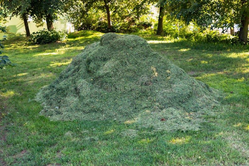 Pila del montón de césped recientemente cortado de la hierba en parque fotos de archivo
