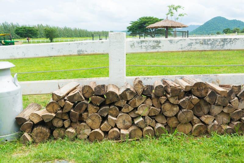Pila di ceppo tagliato, legna da ardere fotografia stock libera da diritti
