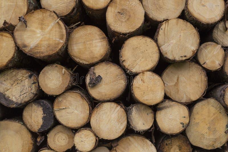 Pila di legno woodpile fotografia stock