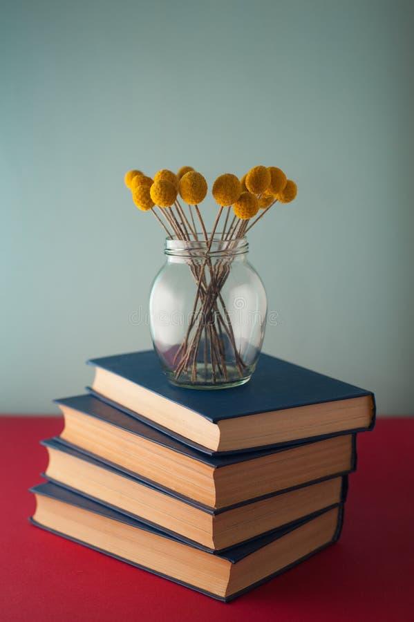 Pila di libri e di fiori immagini stock libere da diritti