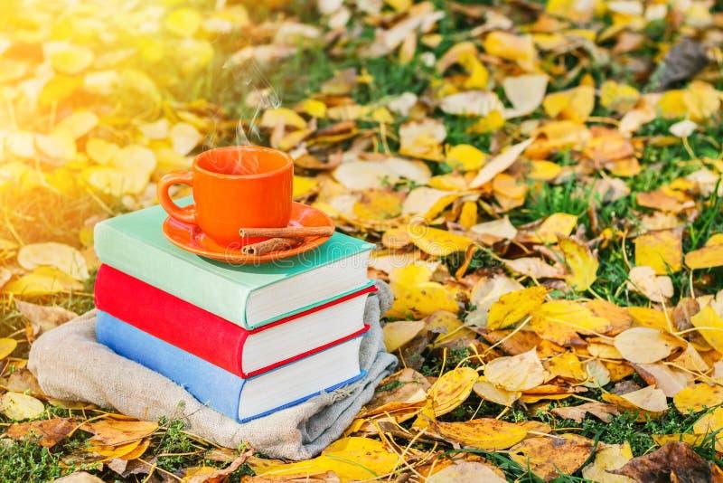 Pila di libri e di tazza di caffè caldo sulla vecchia tavola di legno nella foresta al tramonto Di nuovo al banco Concetto di for fotografie stock