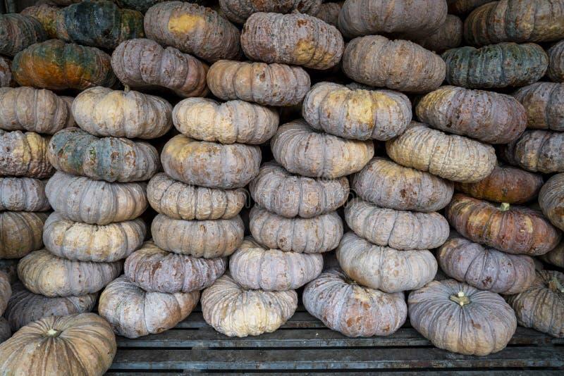 Pila di zucca tailandese matura al mercato di un agricoltore fotografie stock libere da diritti