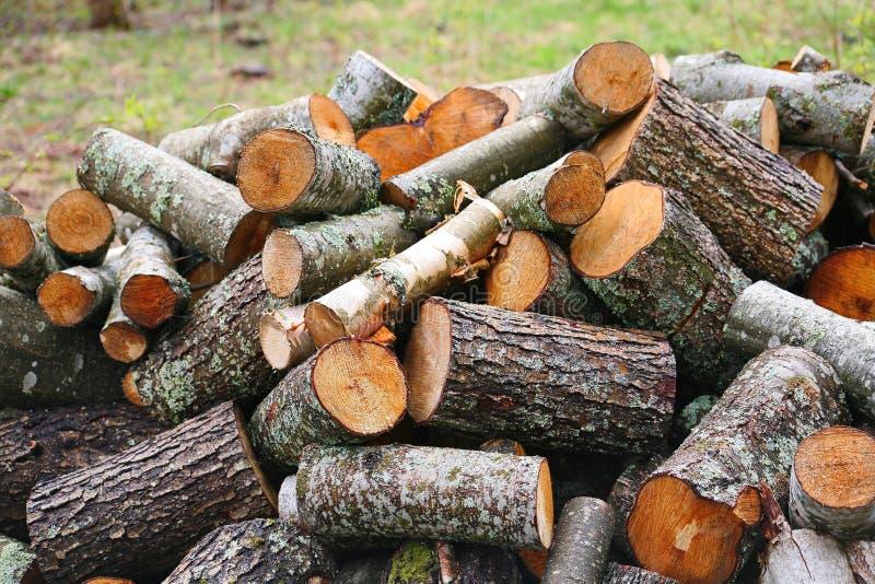 Pila grande de leña Pila grande de leña para la chimenea troncos de árbol aserrados álamo temblón rojo y abedul, llenados en un m fotografía de archivo libre de regalías