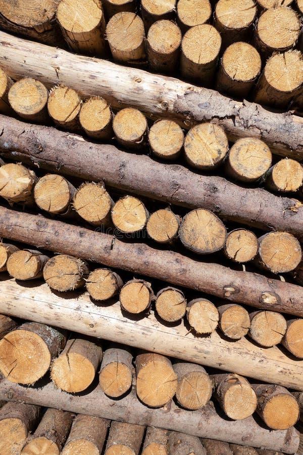 Pila inclinada de troncos de árbol de las cargas fraccionadas imágenes de archivo libres de regalías