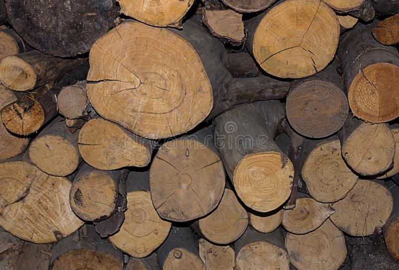 Pila natural del tronco del registro, textura natural de madera de pino del fondo fotografía de archivo