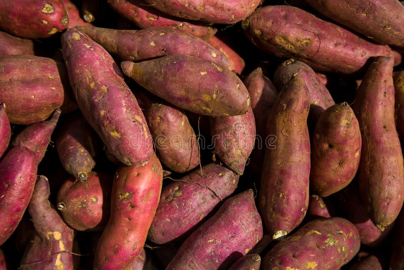 Pila púrpura fresca de los ñames Patata dulce en venta en mercado local fondo cofred del ñame, pila de ñame rojo o púrpura en fon fotos de archivo libres de regalías