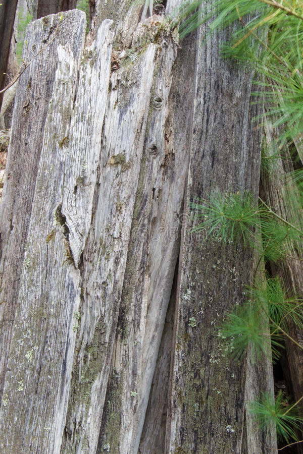 Pila verticale di bordi invecchiati fotografia stock