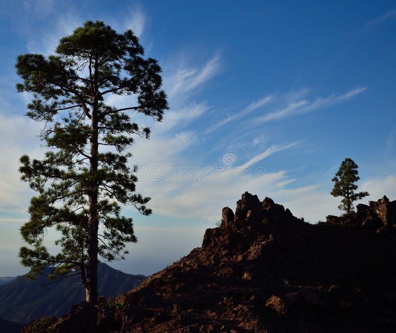 Pilancones, Gran Canaria royalty-vrije stock foto's