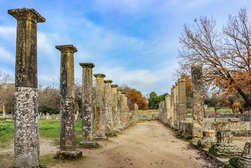 Pilares en las filas donde estaban lisos los atletas entrenados en Olympia Greece antigua - hogar de los primeros juegos - las pa imagen de archivo libre de regalías