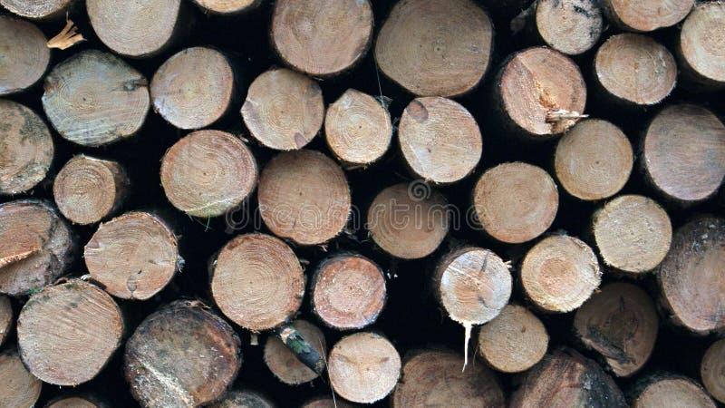 Pilas de madera aserrada imagen de archivo
