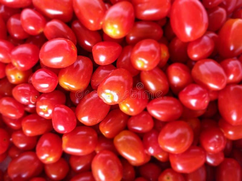Pilas de mini tomates frescos imágenes de archivo libres de regalías