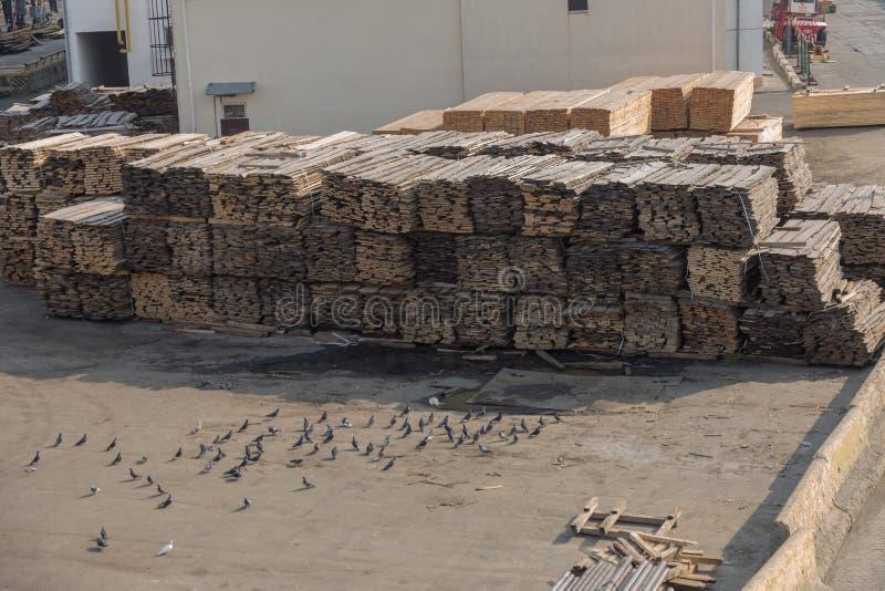 Pilas de tablones de madera en la litera del puerto Warehouse para el sawin fotografía de archivo libre de regalías