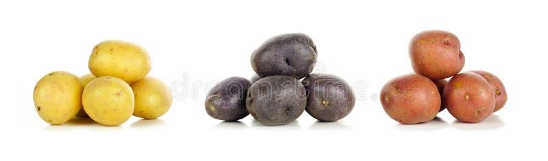 Pilas patatas del amarillo, púrpuras y rojas de pequeñas sobre blanco fotografía de archivo libre de regalías