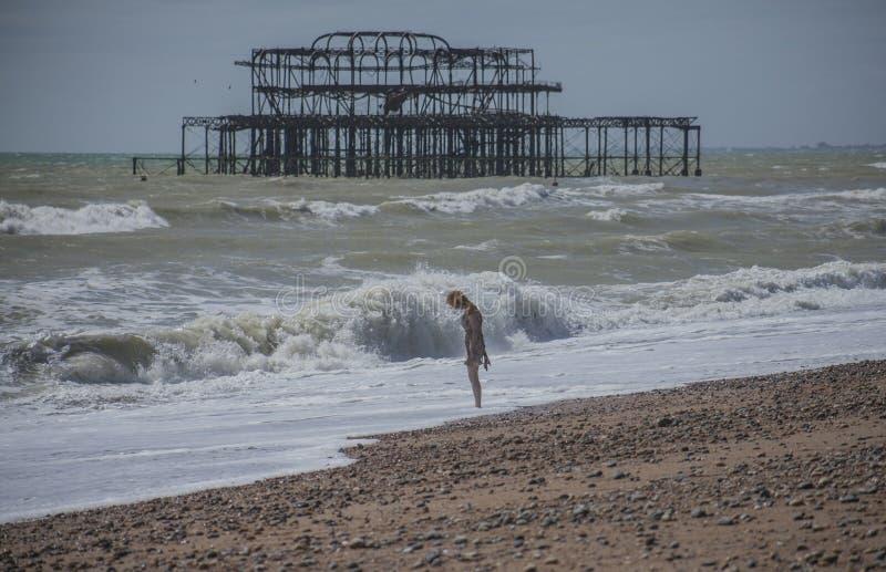 Pilastro ad ovest, Brighton, Inghilterra, Regno Unito - raffreddando sulla spiaggia fotografia stock libera da diritti