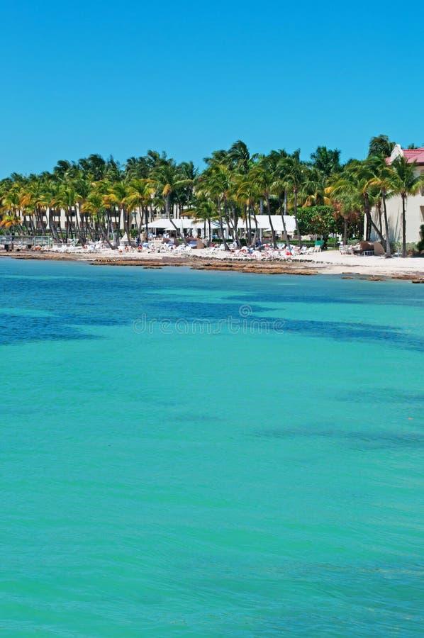 Pilastro della spiaggia di Higgs, palme, case, mare, Key West, chiavi, Cayo Hueso, Monroe County, isola, Florida fotografia stock