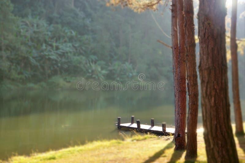 Pilastro di legno alla mattina fotografie stock libere da diritti