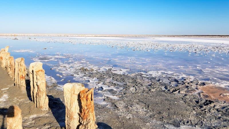Pilastro di legno della deriva su una spiaggia sabbiosa immagini stock libere da diritti