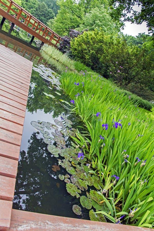 Pilastro di legno e belle piante in un giardino giapponese for Piante belle da giardino