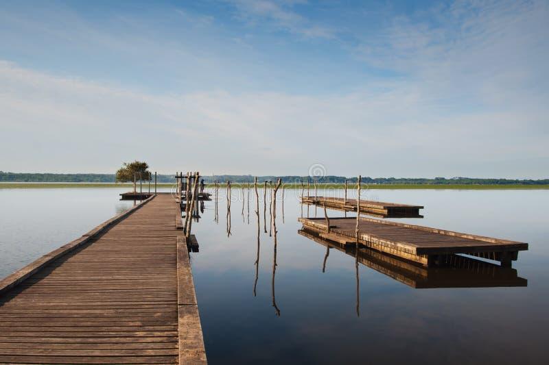 Pilastro di legno sul lago Soustons, Francia fotografia stock