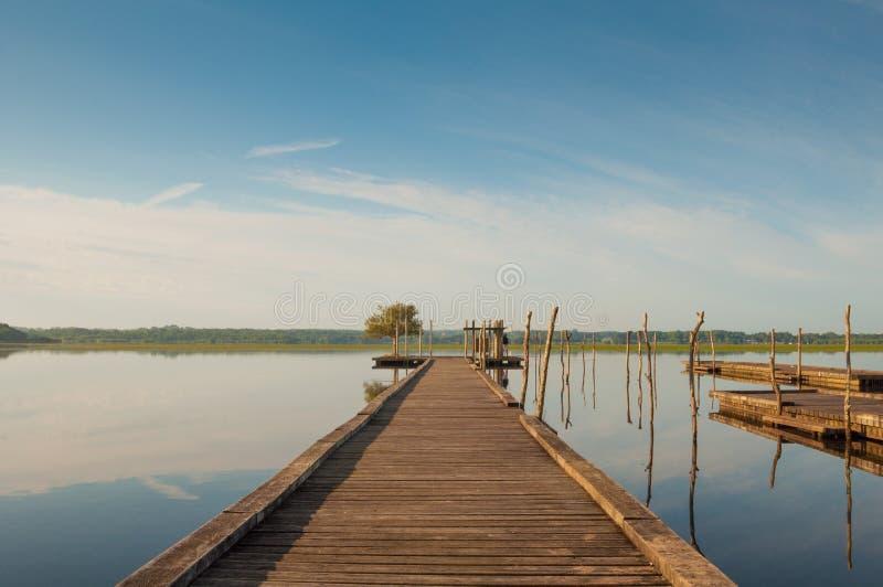 Pilastro di legno in un lago Alba a Soustons, Francia immagine stock libera da diritti